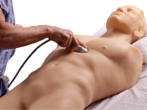 fast_trauma_ultrasound_training_model